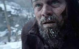 Từ 5 lần trắng tay đến chiến thắng huy hoàng của Leonardo DiCaprio tại Oscar 88