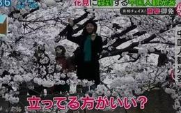 Du khách Trung Quốc lại thành chủ đề hot trên truyền hình Nhật