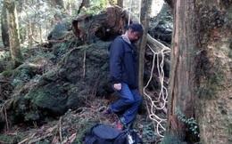 Khám phá 13 điều rùng rợn về khu rừng tự sát tại Nhật