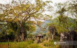 """Ngôi làng mà King Kong đã """"quậy"""" ở Quảng Bình có gì hay?"""