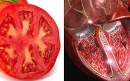 Bạn sẽ không tin là 17 thực phẩm này giống hệt và đặc biệt tốt cho các bộ phận cơ thể