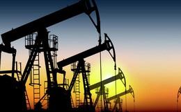 """""""Đại gia"""" dầu khí Nga bắt đầu khoan thăm dò ngoài khơi Việt Nam"""