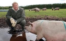 Peter Schmeichel: Phá sản vì... nuôi lợn, nhặt rác và làm bia...
