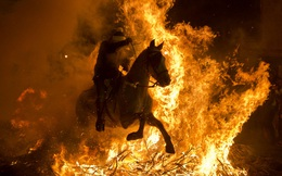 24h qua ảnh: Kỵ sĩ cưỡi ngựa nhảy qua lửa