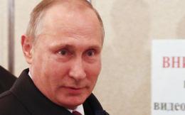 Tổng thống Putin ngừng hủy chất phóng xạ plutonium