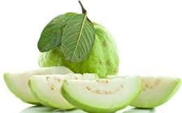 8 lợi ích của trái ổi