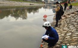 Cá chép vừa thả xuống sông Tô Lịch đã bị bắt lên