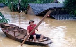 """Mưa """"siêu khủng"""" lập kỷ lục ở Quảng Bình: Chỉ 6 tiếng đạt 500mm"""