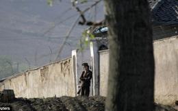 Tiết lộ nơi giam giữ những người thất sủng trong gia tộc lãnh tụ Triều Tiên Kim Jong Un
