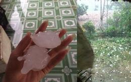 """Clip: Xem mưa đá """"khủng"""" ở Tuyên Quang"""