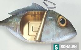 Cá đóng hộp hay cá tươi tốt hơn?