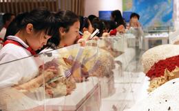 TQ đã bóp méo sự thật biển Đông trong giáo dục như thế nào?