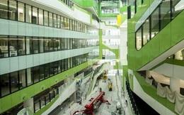 Phát hiện chất gây ung thư trong vật liệu xây dựng Trung Quốc