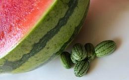 Cucamelon - loại dưa hấu tí hon có thể trồng được ngay tại nhà của bạn