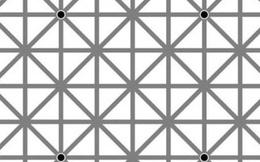 99,99% trong 7 tỷ người sẽ không thể nhìn thấy 12 chấm đen trong cùng lúc