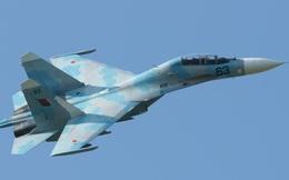 Đã làm chủ công nghệ tăng hạn, VN sẽ mua gom Su-27 cũ từ Đông Âu?