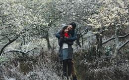 Cặp đôi có ảnh cưới để đời nhờ đến Mộc Châu lúc tuyết rơi