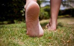 """Thỉnh thoảng, hãy """"vứt"""" đôi dép để hưởng những điều tuyệt vời khi đi chân trần"""