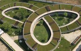 Những kiến trúc nhà xanh cho thành phố của KTS Võ Trọng Nghĩa