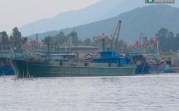 Phát hiện tàu của Formosa nhập 168 tấn bùn boxit từ Trung Quốc