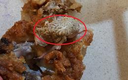 KFC tiếp tục khiến khách hàng kinh hãi vì vật thể lạ như... bộ não trong thịt gà rán