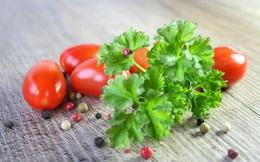 """Ở Việt Nam chỉ là rau gia vị, ở Ấn Độ, loại cây này được tôn vinh là """"thảo dược kỳ diệu"""""""