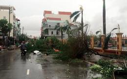 """Cảnh tượng tan hoang tại Nam Định sau khi bão số 1 """"càn quét"""""""