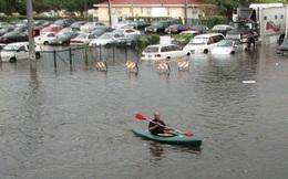 Cách chống ngập bằng bơm ly tâm của thành phố Miami