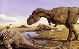 Khủng long bị tuyệt chủng không phải vì thảm họa thiên thạch