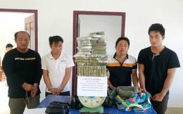 Video: Triệt phá đường dây buôn heroin khủng từ Tam giác vàng về Việt Nam