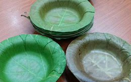 Người Ấn phát minh ra chiếc bát làm từ lá cây, thay thế cho hộp đựng thức ăn bằng xốp độc hại