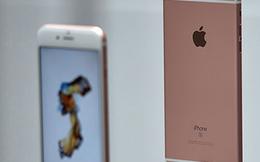 Chú ý: Hiến tinh trùng nhận ngay... iPhone 6S miễn phí