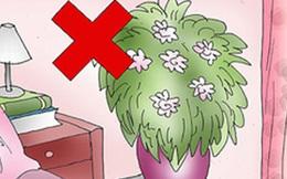 Nếu không muốn tổn thọ, đừng dại dột đặt 6 thứ sau ở đầu giường