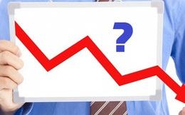 Cổ phiếu ATG giảm sàn 11 phiên liên tiếp, lãnh đạo công ty lên tiếng trấn an nhà đầu tư