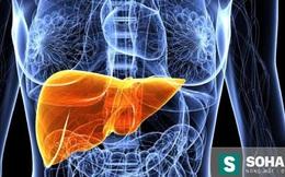 Tuyệt chiêu dưỡng gan, giải độc đơn giản ai cũng có thể làm được
