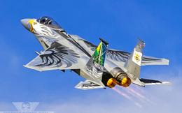 """Chùm ảnh đẹp về tiêm kích F-15C """"Phiên bản kỷ niệm"""""""