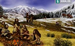 Người cổ đại tạo lửa bằng cách này từ hơn 50.000 năm trước