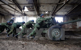 Lực lượng ly khai Ukraine nhất trí ngừng bắn không thời hạn