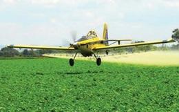 Hơn 100 học sinh và giáo viên bị ngộ độc vì hít phải thuốc diệt cỏ