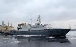 Mua tàu Delphin đặc chủng: Nga chuẩn bị sẵn hồ sơ mời Hải quân Việt Nam