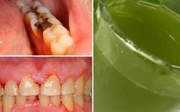 Nước lá chanh cô đặc: Bài thuốc chữa đau răng, viêm lợi hiệu quả