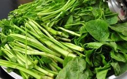 Sai lầm khi ăn rau cần khiến bạn rước cả ổ sán vào trong bụng