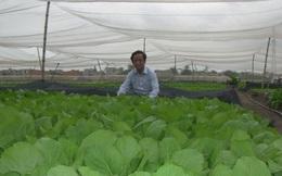 Cách chọn thực phẩm an toàn của GS Nguyễn Lân Dũng