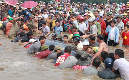 """Giải cứu thành công cá voi """"khủng"""" mắc cạn ở biển Nghệ An"""