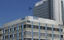 OPEC chấp nhận giảm khai thác, giá dầu thô tăng chóng mặt