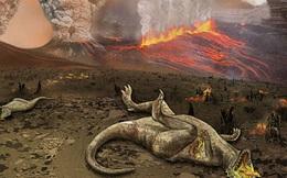 Dựa vào đâu để kết luận một loài đã tuyệt chủng hay chưa?