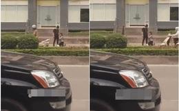 Hình ảnh ít gặp trên phố Hà Nội khiến người ta sửng sốt