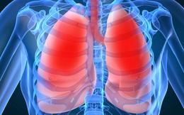 Bạn sẽ ngạc nhiên trước sự thay đổi của phổi khi hít một hơi thật sâu