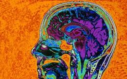 Làm thế nào để dập tắt những suy nghĩ tiêu cực trong bạn?