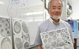 Nhà khoa học Nhật Yoshinori Ohsumi nhận Nobel Y học, mở ra cơ hội chữa trị ung thư